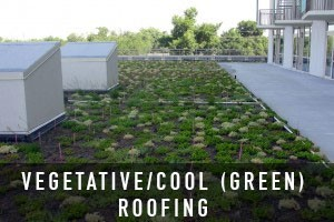 greenroofin